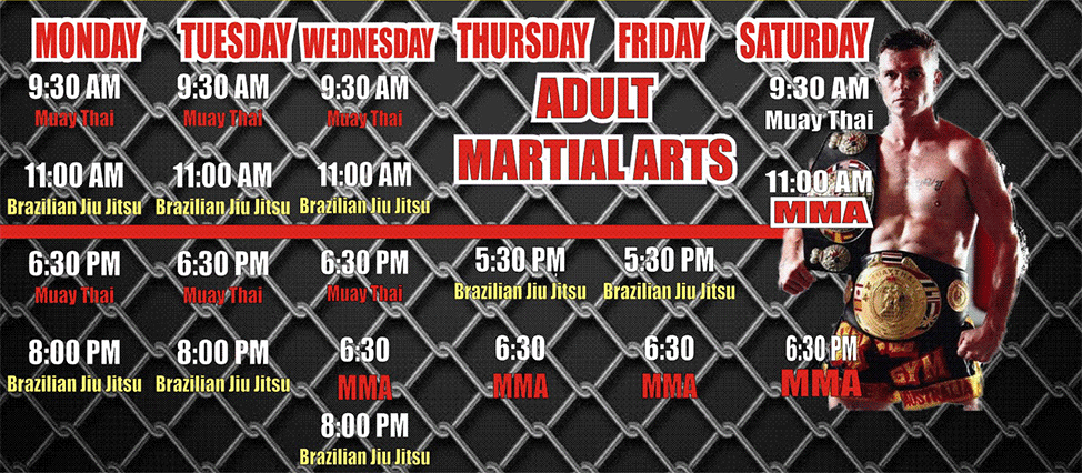 Adult Martial Arts Schedule